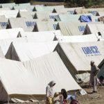 Argument o utečeneckej kríze